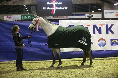 KAMPIOEN bij de 4 t/m 7 jarige springpaarden
